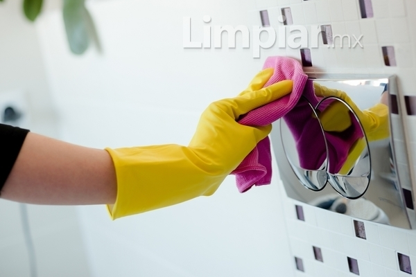 Cómo prevenir el moho del baño - Limpiar.mx