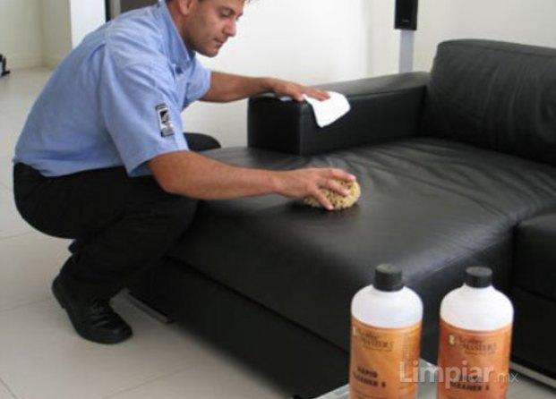 Intelligent leather for Limpieza de muebles