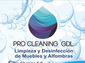 Pro Cleaning GDL
