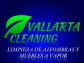 Vallarta Cleaning