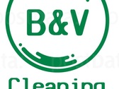 B&V Cleaning Services